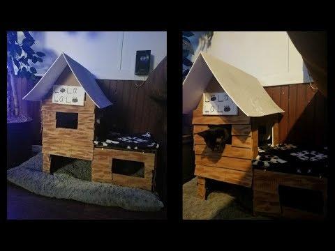 cat house 🐱 casa para gato 🏠 DIY