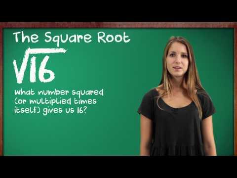 Kids Teach Math: Square Roots