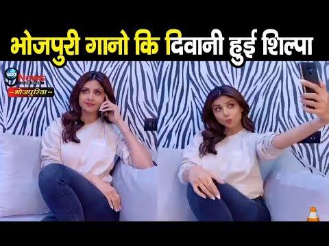 Xxx Mp4 भोजपुरी के इस गाने पर शिल्पा शेट्टी का विडीयो हो रहा वायरल Ritesh Pandey Shilpa Shetty Tik Tok Video 3gp Sex