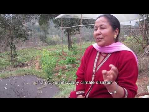 Freak frost pushes Nepalese farmers to insure crops