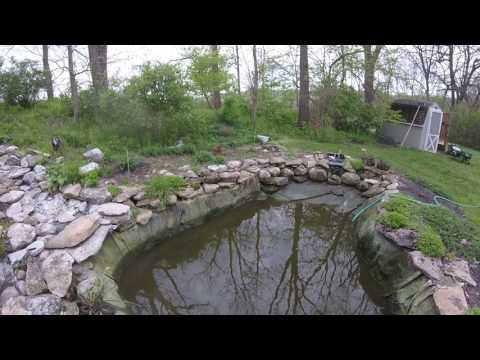 How to deal with an uneven pond edge