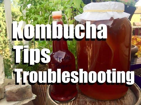 Making Kombucha Tea  - Tips and Troubleshooting