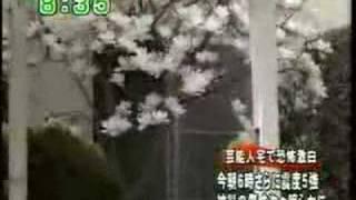Earthquake In Geiyo, Japan