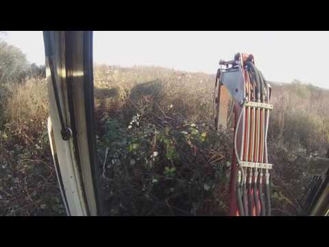 clearing brambles part 2