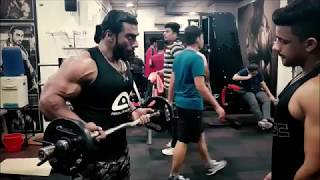 HOW I TRAIN MY ARMS!