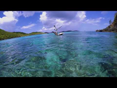 St John Snorkeling Trunk Bay - Fish Fish and More Fish