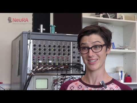 NeuRA's Dr Anna Hudson awarded research fellowship