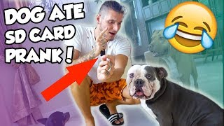 DOG ATE MY SD CARD PRANK! ALL FOOTAGE LOST! HE GOT SO MAD! FUNNY AF