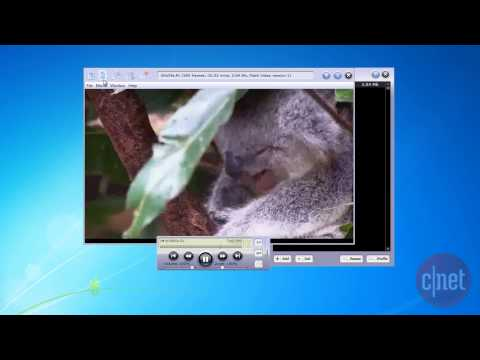 SWF & FLV Player - Play, download, and manage Flash files - Download Video Previews