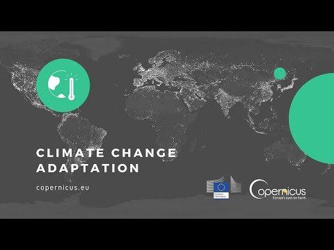 Climate Change Adaptation and Mitigation: Climate Change & the Water Sector