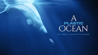 A Plastic Ocean Official Trailer