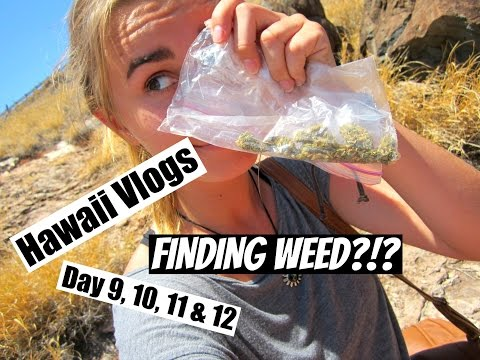 HAWAII VACATION DAY 9, 10, 11 & 12 | I FOUND WEED?!?