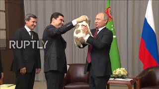 Putin gifted puppy called 'Faithful' from Turkmenistan