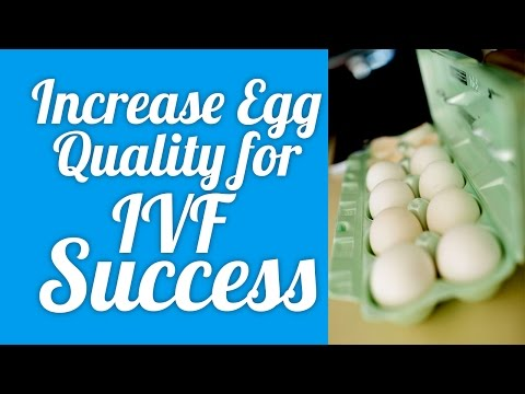Increase Egg Quality for IVF success!