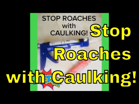 Stop Roaches with Caulking!
