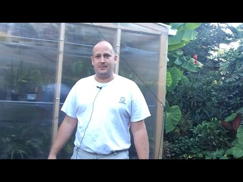 Greenhouse Heating: Tips to Cheaper Winter Greenhouse Heating Bills