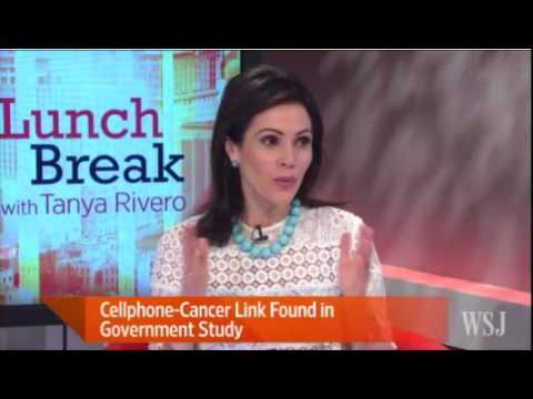 Wall Street Journal on NTP Cell Phone Cancer Research Study