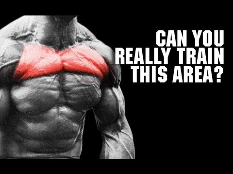 Target Your UPPER CHEST (Pec Isolation Reality!!)