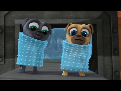 Bingo And Rolly Get Bubble Wrapped Puppy Dog Pals Disney 2017