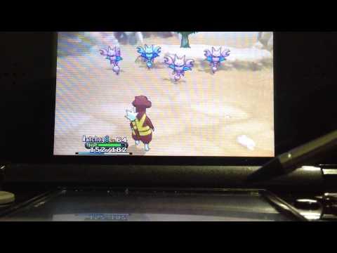 Pokemon Y Random Shiny Gligar LIVE with sparkles!