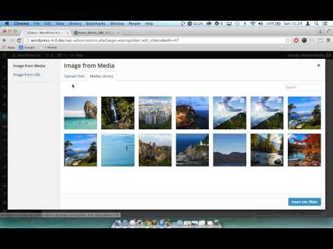 Insert an image from URL into a slider