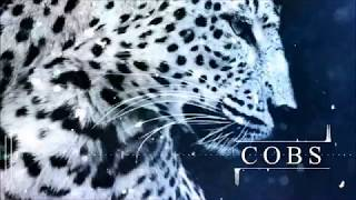 COBS - Tremble (Audio)
