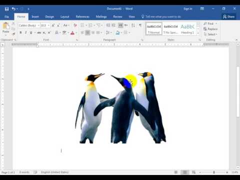 remove picture background in word