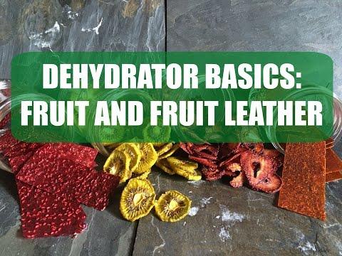 Dehydrator Basics: Fruit and Fruit Leather
