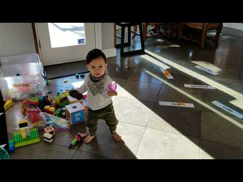 Bodhi at 15  months old - Shapes and Solids. Taught with Glenn Doman reading method.