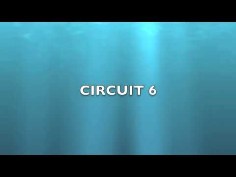 Electrical Circuits 6