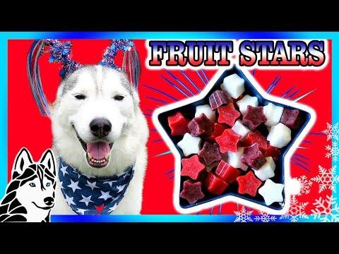 DIY PATRIOTIC FRUIT STARS   DIY Dog Treats   Snow Dogs Snacks 76