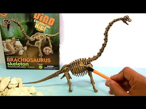 Dinosaur toy skeleton fossil excavation | Esqueleto de dinosaurio juguete para excavar | 玩具恐龍 - 2/7