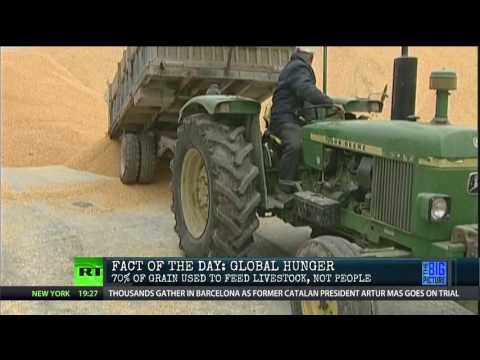 How We Could End World Hunger…