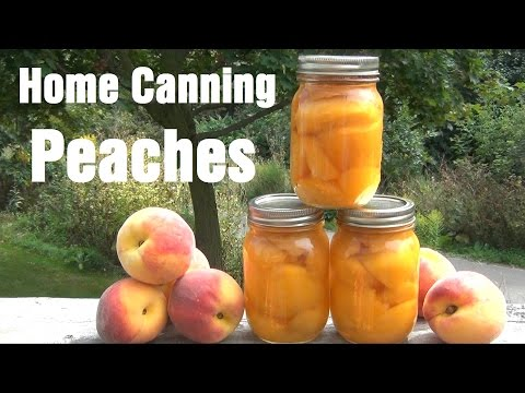 How To Can Peaches At Home
