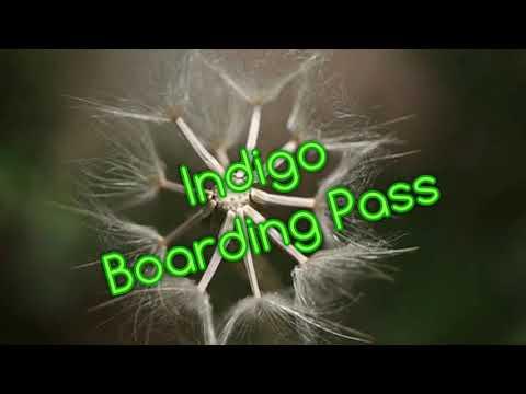 Indigo Boarding Pass