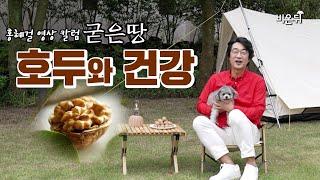 """홍혜걸의 굳은땅 #13 """"식물성 오메가3가 풍부한 호두가 건강에 좋은 이유"""" - 홍혜걸 의학전문기자"""
