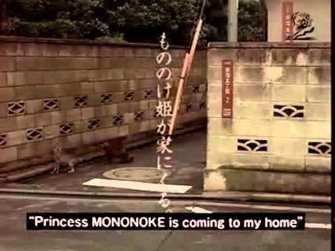 Xxx Mp4 Princess Mononoke Breast Feeding Cat Lizard 2000 Japan 3gp Sex