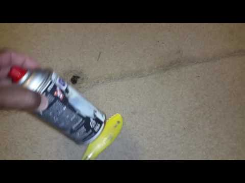 ( TIP OF THE DAY ) removing gum from carpets
