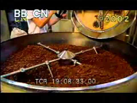 Cocoa Plant Processing - Making Chocolate - Chocolate Factory - Best Shot Footage - Stock Footage