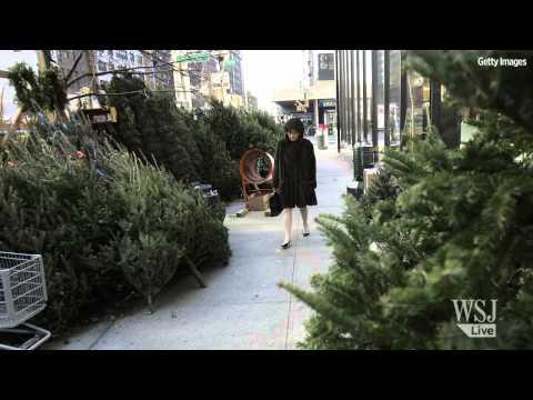 7 Tips to Pick & Keep the Perfect Christmas Tree