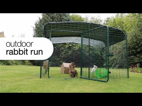 Outdoor Rabbit Run