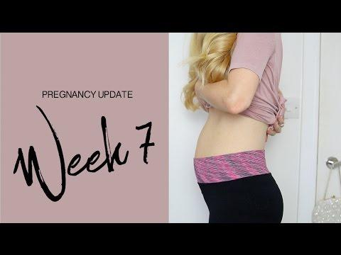 7 Week Pregnancy Update   Dollybowbow