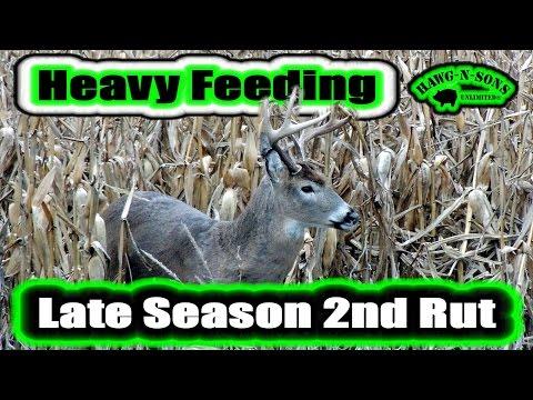 Late Season Deer Hunting Secrets To Help Kill MONSTER Bucks 2016