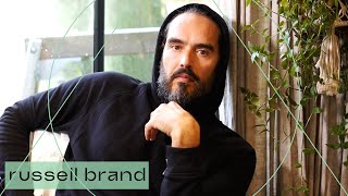 Are We In Danger Of Becoming Docile Automatons?   Russell Brand