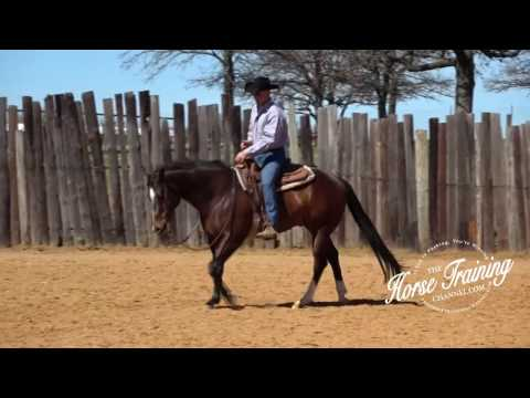Instantly Improve Your Horse's Lope
