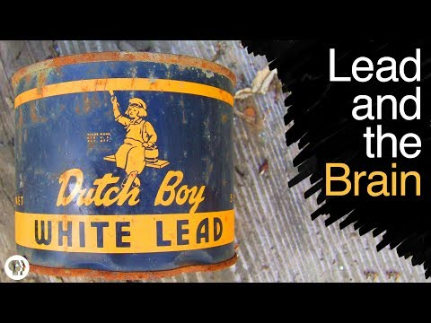 What Does Lead Poisoning Do To Your Brain?