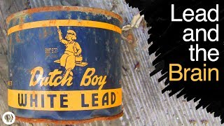 what does lead poisoning do to your brain
