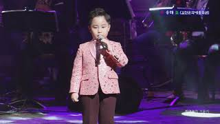 노래신동 홍잠언 (내가 바로 홍잠언이다) 孝송해쑈콘서트 2019-05-08 김천문화예술회관 공연