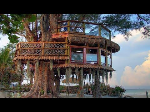 Free DIY Tree House Plans to Make Your Childhood