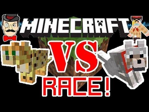 Minecraft OCELOT vs WOLF Race ! Cat VS Dog !